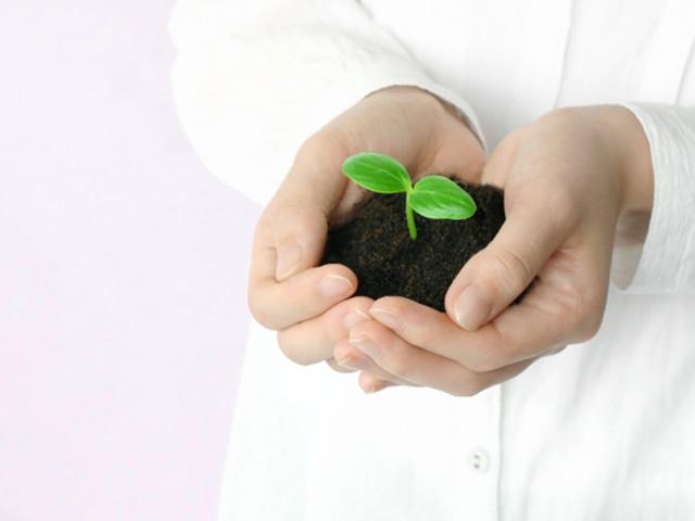 土壌汚染調査をする